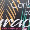 Sleek Makeup – Review Caribbean Collection